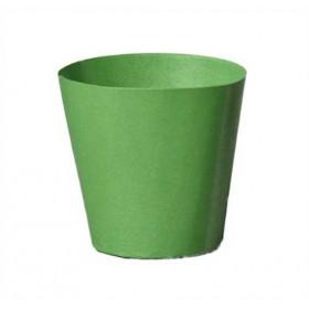 Illu-Becher Papier grün